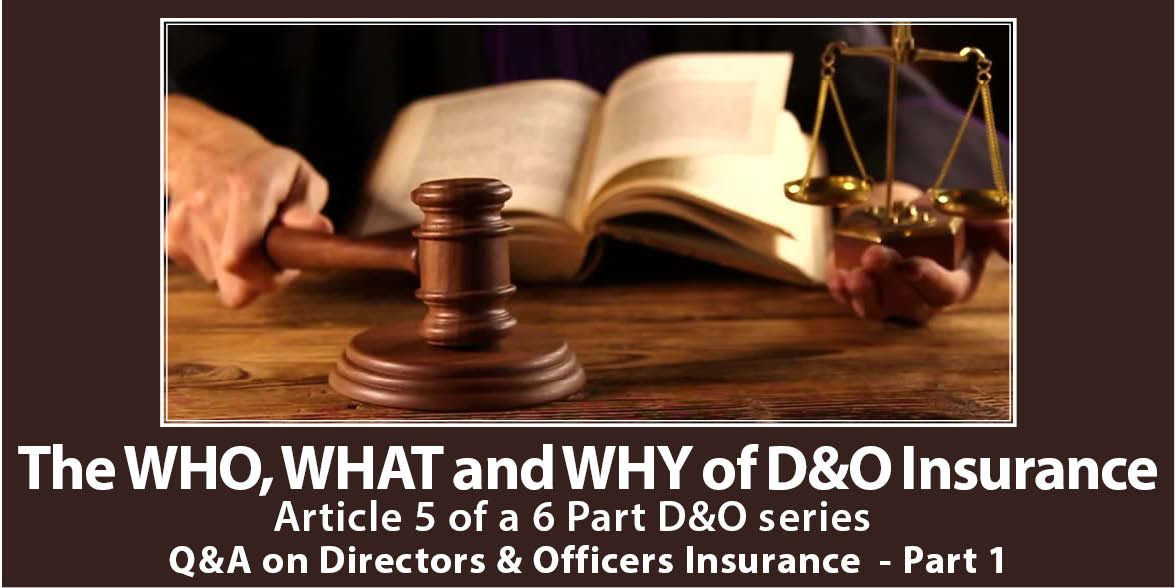 website image Design for fifth article D&O